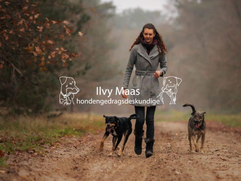 Hondengedragsdeskundige Ilvy Maas ongewenst gedrag wat nu?
